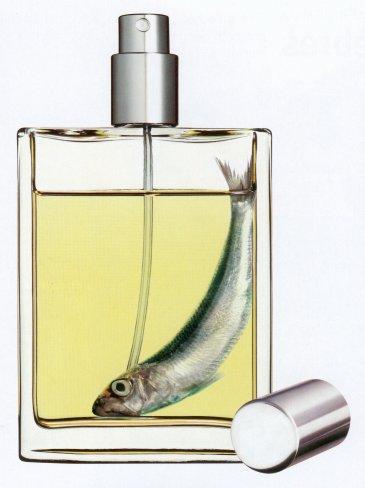 parfume1